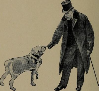 good deed dogs