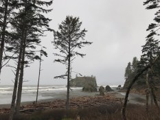 Ruby Beach in the rain