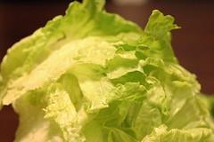 CSA veggies 2/2/10