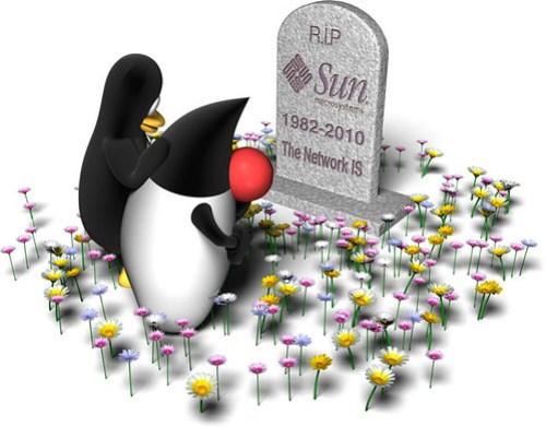 sun-rip-2010