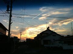 今日の夕陽、秋の空デスね