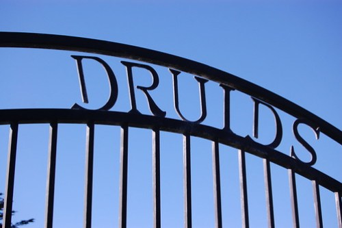Druid Cemetery - Coffey's Cove