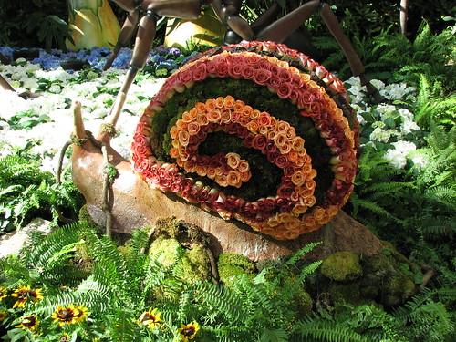 flower snail