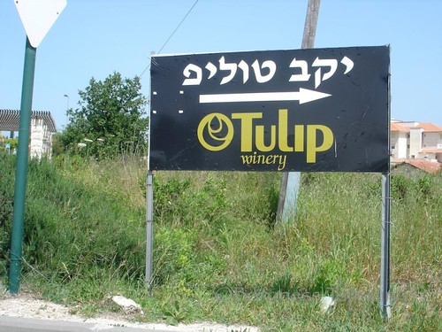 Tulip Winery Sign