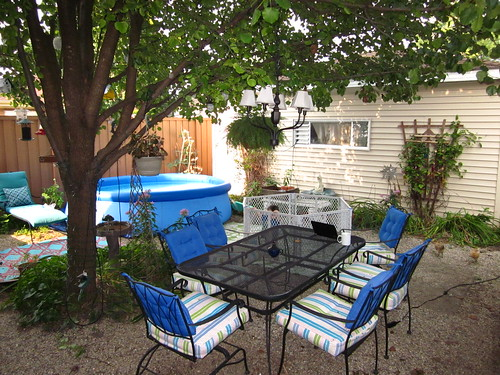 Loving the backyard so far.