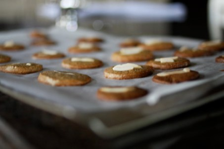 spiced cookies