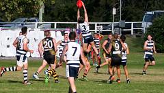 Balmain Tigers v Camden Cats AFL Division1 May 27 2017 000127