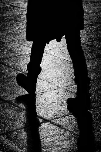Stalking the light