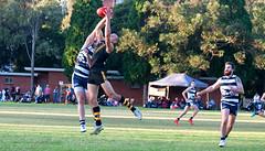Balmain Tigers v Camden Cats AFL Division1 May 27 2017 0009B