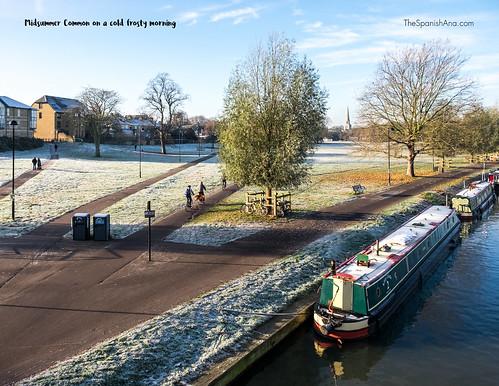 12-frost.jpg