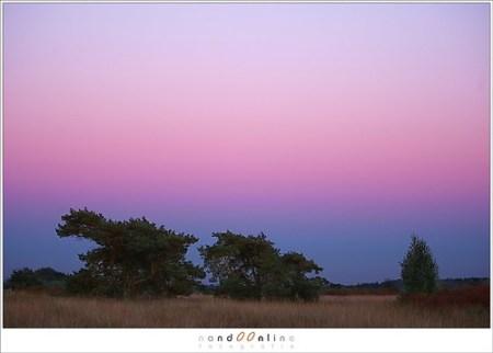 Belt of Venus just after sunset (1D071343)