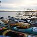 Edible BC | Gourmet Kayaking