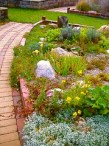 How Do You Decorate a Slope in the Garden? Plant Rocks 