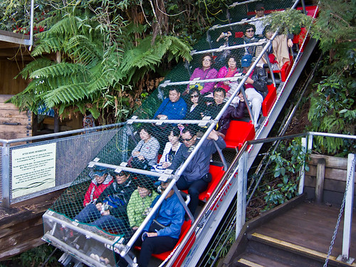 Katoomba scenic railway