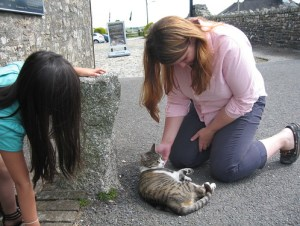A friendly neighbourhood stray cat who frequented Jamaica Inn