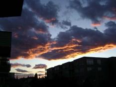 Reader W.U. Mt. Pleasant Vancouver, BC 915pm