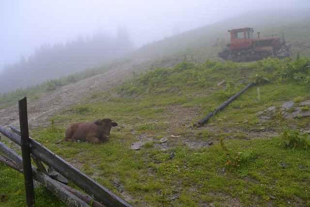Horseback Riding Trip in the Carpathians _ Zero visibility
