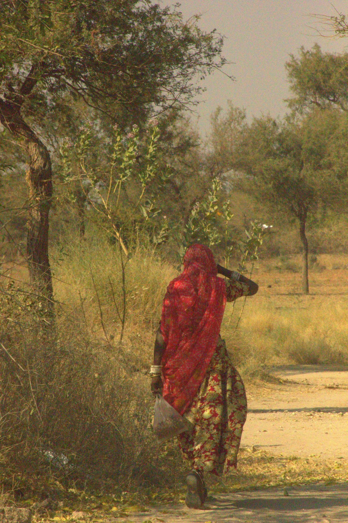 A woman walking towards Salawas village
