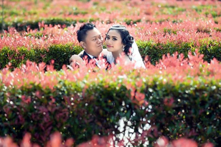 gofotovideo prewedding taman bunga nusantara TBN cianjur 0447