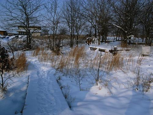 snowfall-path