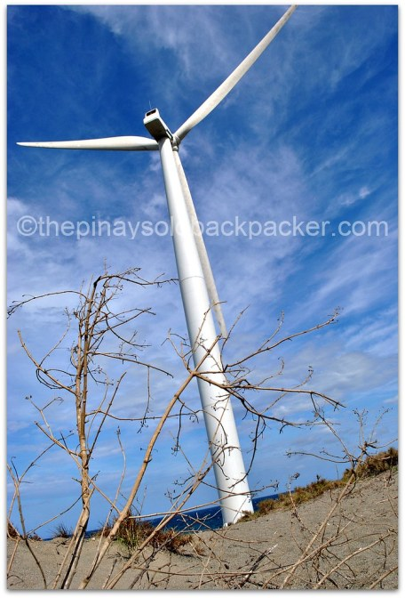 Bangui Windmills Photo