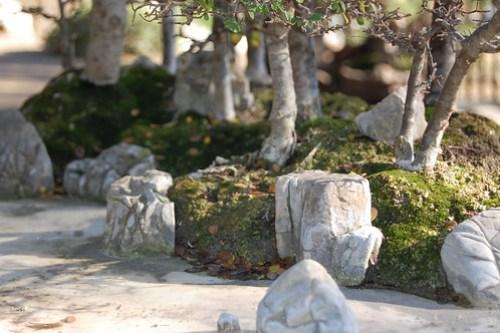 Penjing - miniture landscapes.