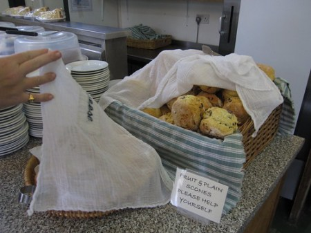 Scones at the Orchard