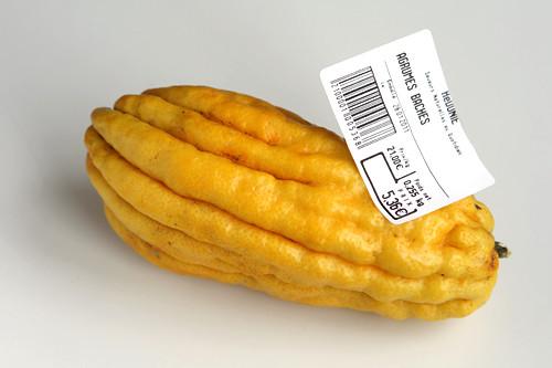 citron blog
