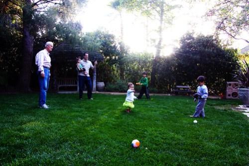 a family baseball game