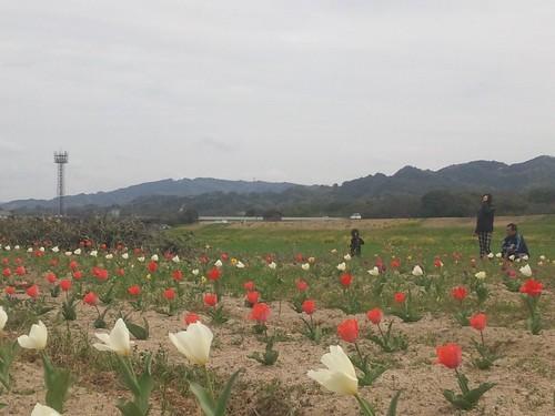 C360_2011-04-07 13-43-53