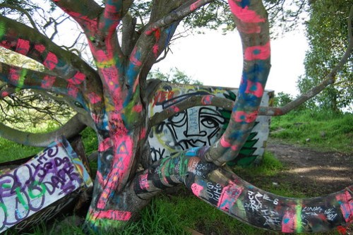 Hyper painted tree