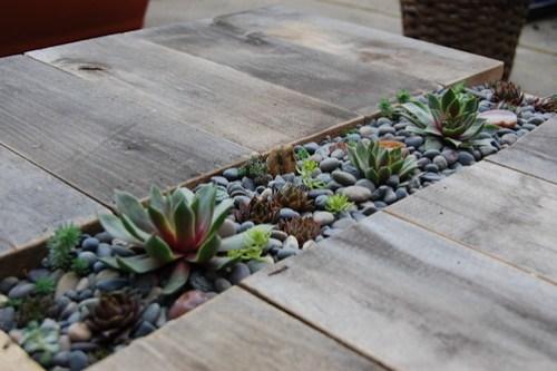 Matti's Succulent Table