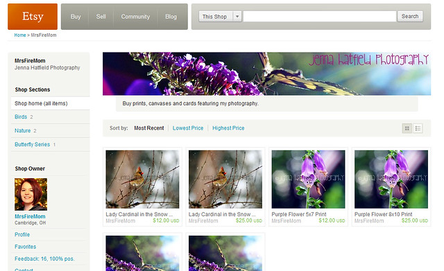 Etsy Store Screenshot