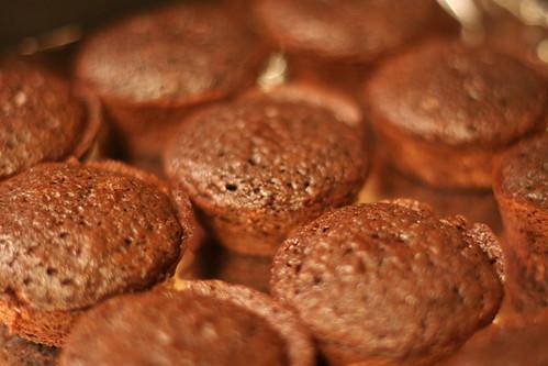 Kahlua Coconut Cupcakes for Sloshball