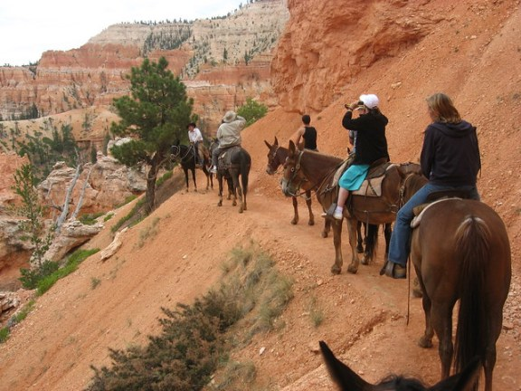 Horse riding through Bryce Canyon