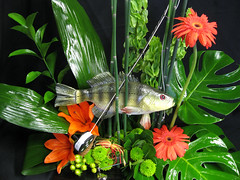 A Fishing Floral Fantasy