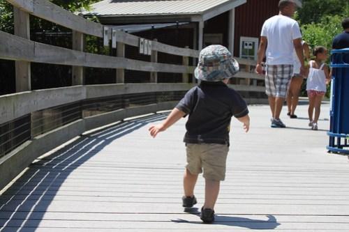 Exploring the Kids' Farm