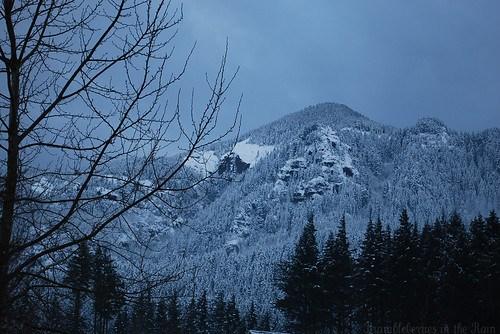 Snowy December Day