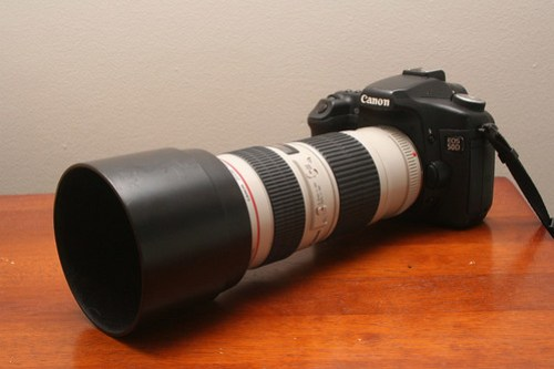 Canon EOS 50D and EF 70-200mm f/4.0 L USM lens