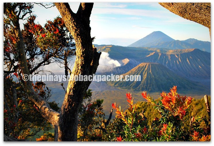Mt.Bromo sunrise photo