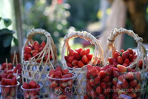 Mountain Strawberries, Street Food in Thailand