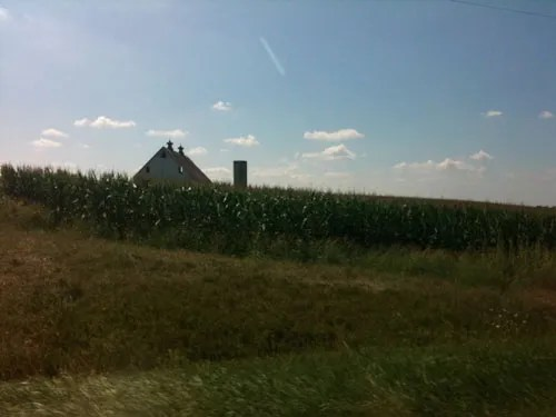cornfield in souther ohio