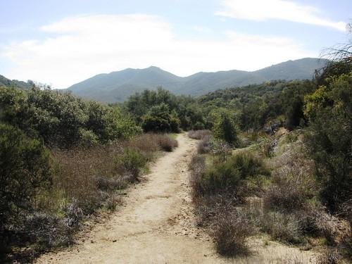 Bear Canyon Ridge Loop 3-12-11