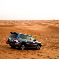 On The Sands Again, Desert Safari, Dubai