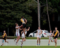 Balmain-Tigers-v-UNSWES-Round-9-2014-0043