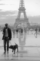 Man walking his dog near Eiffel Tower, Paris