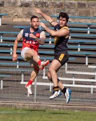 Pennant-Hills-v-Balmain-AFL-Division-1-0035