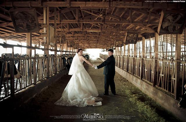 peach-2013-3-7-wedding-3167