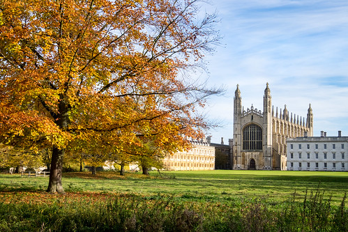 Autumn at King's College