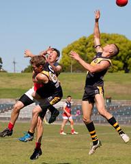 Pennant-Hills-v-Balmain-AFL-Division-1-0005